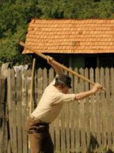 Santul de Adrian Silișteanu