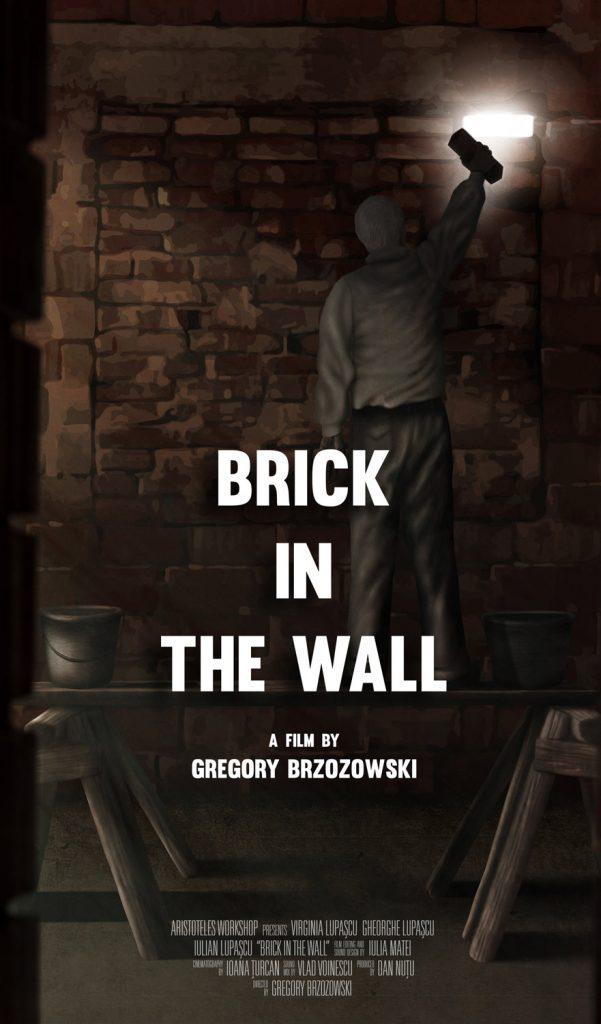 Brick in the wall de Grzegorz Brzozowsky - CINEPUB